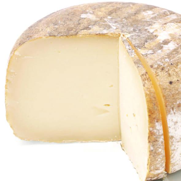 cheese round on white background
