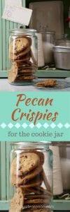Pecan Crispies cookies pin