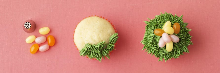 Nest Egg Cupcakes decorations and frosting tip