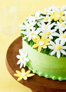 Spring Daisy Cake close up on yellow background