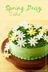 Spring Daisy Cake pin