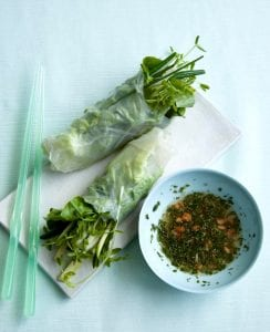 Veggie Spring Rolls with sweet and sour mint sauce