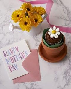 chocolate cupcake in a mini flower pot