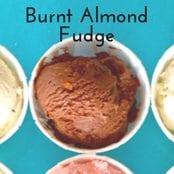 Burnt Almond Fudge Homemade Ice Cream image