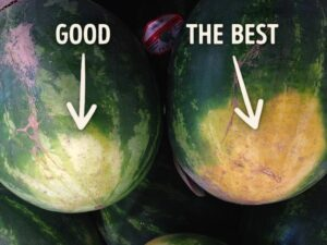 How to choose the best watermelon image with text