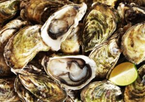 stock photo of clams, two are open