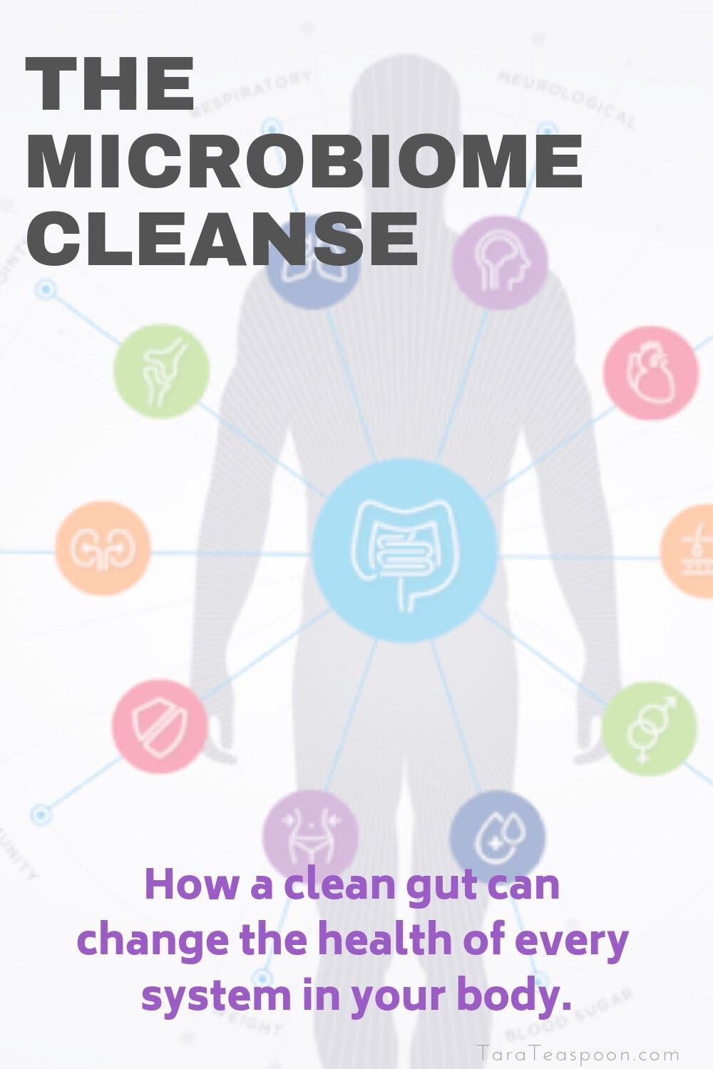 How a clean gut can change your health pin