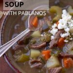Mexican shredded beef soup pin