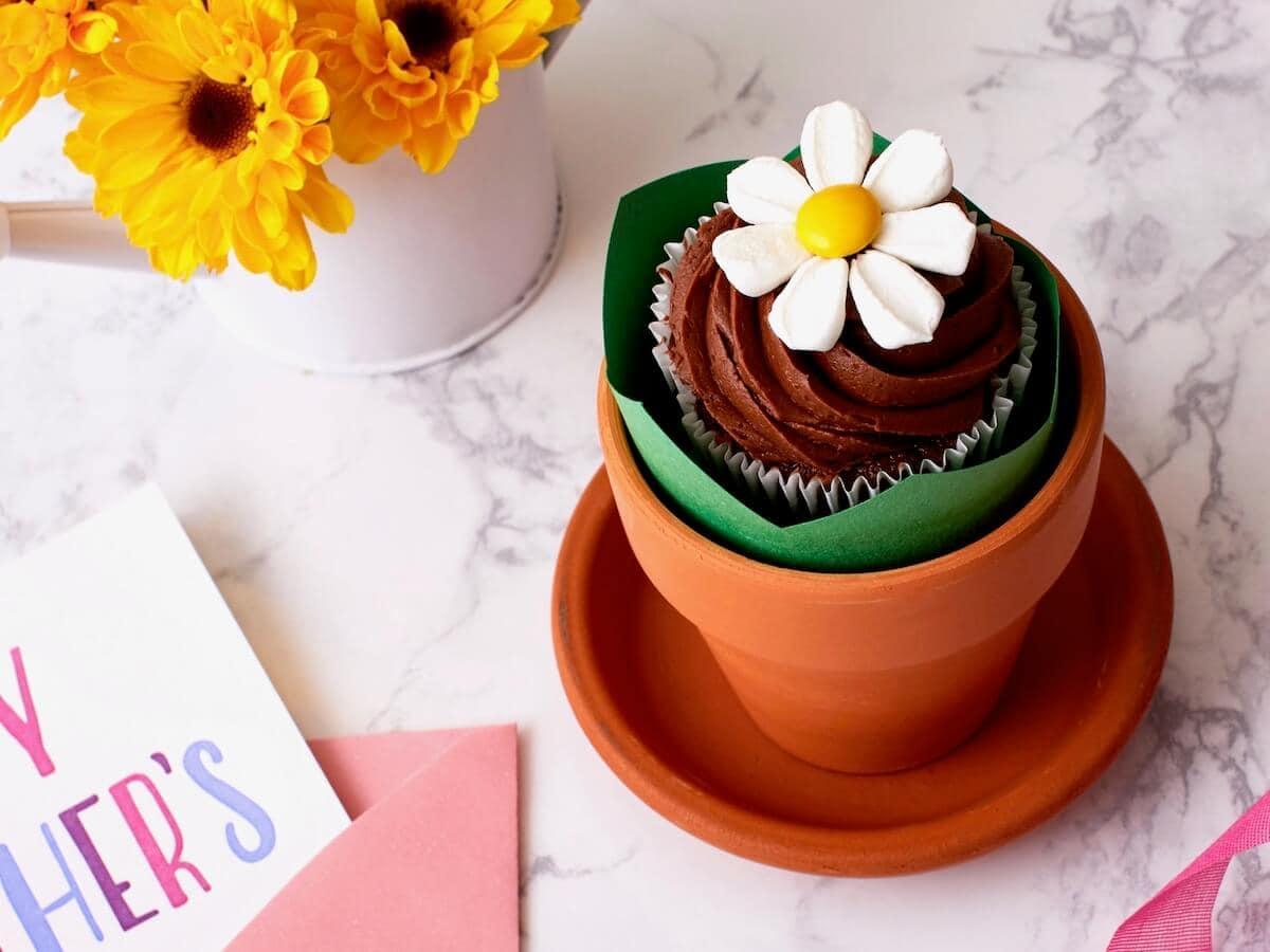Marshmallow Flowers Cupcakes Flower Pot Recipe Tara Teaspoon
