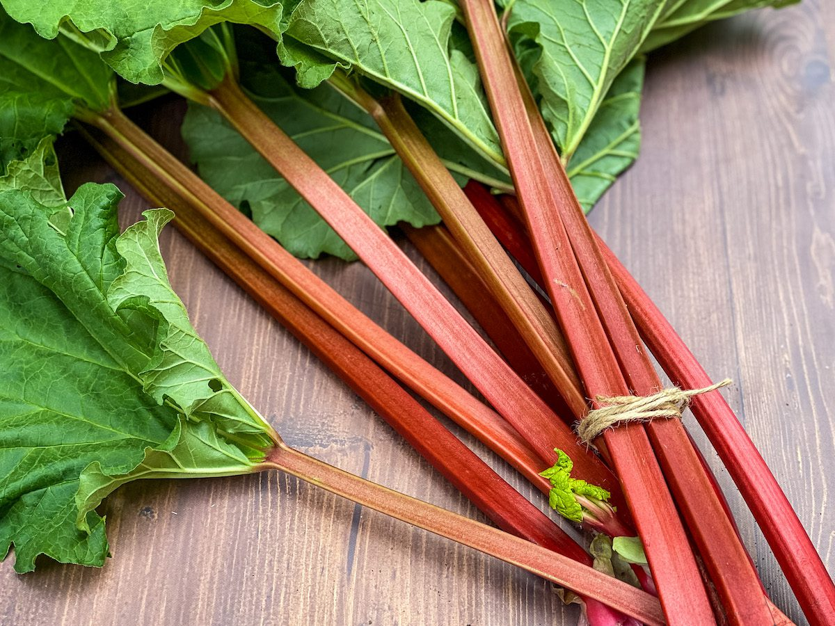 harvested rhubarb on wood table