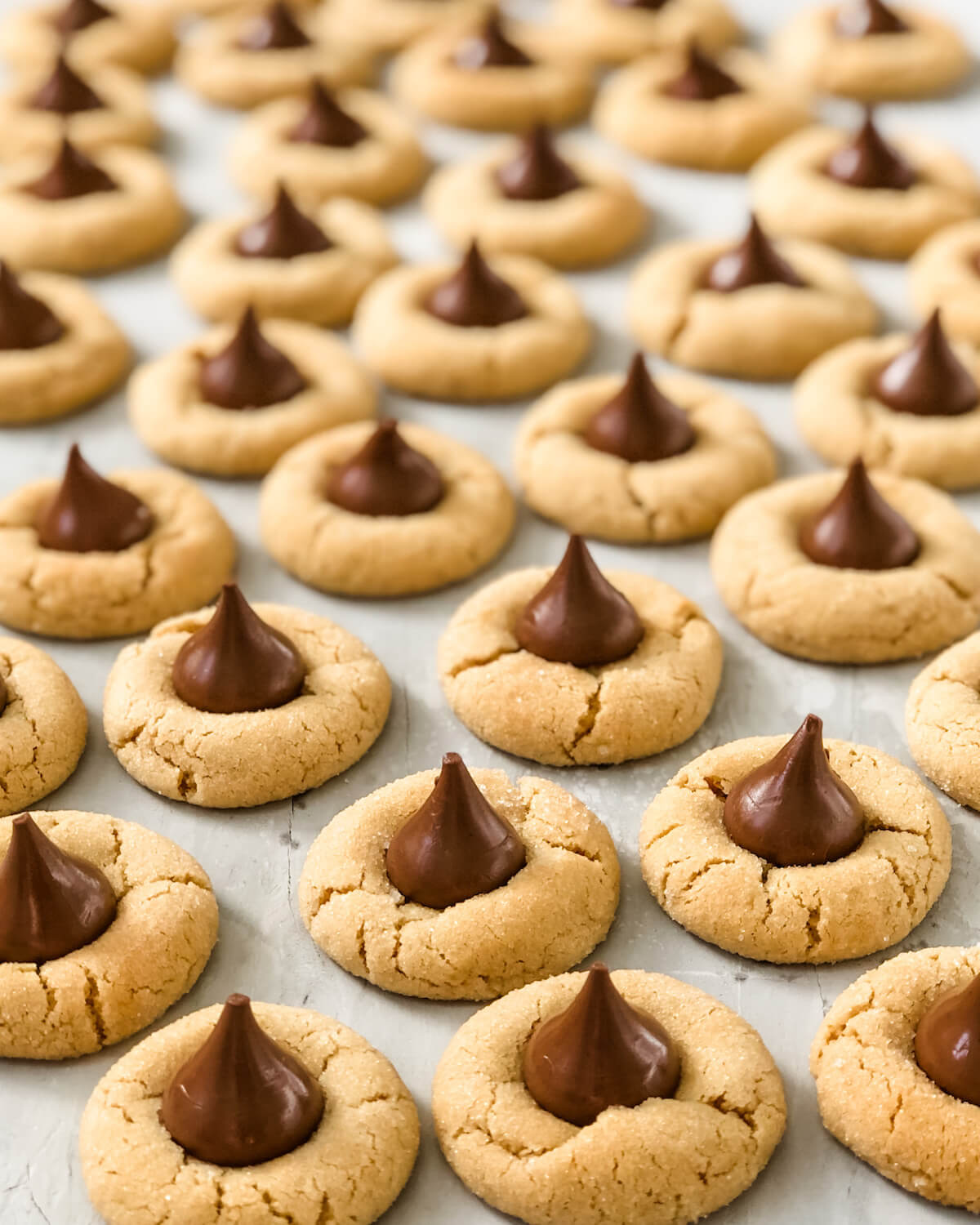 sea of peanut butter blossoms with chocolate kisses